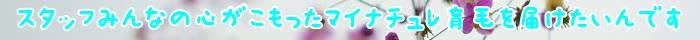 育毛剤,マイナチュレ,育毛,効果,頭皮,使用,抜け毛,エキス,髪,薄毛,女性,髪の毛,剤,成分,男性,口コミ,期間,女性用,ヵ月,原因,シャンプー,ヶ月,商品,場合,無添加,ホルモン,ケア,実感,環境,改善,最近,サイクル,治療,毛根,脱毛,安心,年代,悩み,以前,毎日,地肌,マッサージ,天然,購入,ヘア,元気,変化,バランス,40代女性,ストレス,