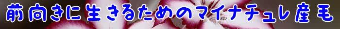 産毛,マイナチュレ,育毛剤,薄毛,効果,育毛,抜け毛,髪,ハゲ,頭皮,髪の毛,成分,女性,はげ,生え際,改善,シャンプー,剤,口コミ,男性,成長,女性用,ヶ月,方法,実感,原因,栄養,使用,対策,副作用,おすすめ,ナチュレ,購入,毛根,記事,m,悩み,商品,コシ,ミノキシジル,サイクル,AGA,体験談,第一歩,可能性,配合,返金保証,天然,一番,必要,