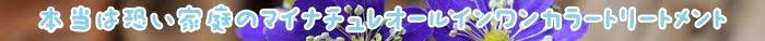トリートメント,カラー,マイナチュレ,髪,色,白髪,使用,白髪染め,エキス,口コミ,場合,コース,頭皮,マイナチュレカラートリートメント,定期,ケア,テスト,ダメージ,染料,タオル,1回,髪の毛,シャンプー,花,ヘアカラートリートメント,アレルギー,放置,値段,1本,ブラウン,オールインワン,届け,商品,得,成分,送料,いつ,効果,地肌,パッチ,評価,刺激,おすすめ,手袋,茎,公式サイト,ヘアケア,ヘアカラー,安心,毎月,