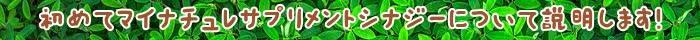 育毛,ケア,サプリメント,成分,マイナチュレ,栄養素,粒,髪,Synergy,配合,摂取,髪の毛,毛髪,栄養,健康,無添加,たんぱく質,必要,女性,内側,原料,アミノ酸,細胞,外側,代謝,商品,コース,実感,物,皮膚,1日,バランス,ビタミン,ミネラル,情報,届け,2018年,効果,安心,モニター,送料,頭皮,使用,パントテン酸,ビタミンB6,エキス,生活習慣,独自,細胞分裂,定期,