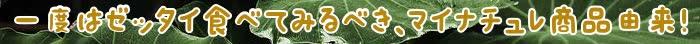 マイナチュレ,育毛,成分,頭皮,育毛剤,エキス,効果,シャンプー,商品,髪,ケア,天然,使用,女性,無添加,配合,由来,薄毛,女性用,コース,届け,皆さま,安心,NA,定期,剤,植物由来,改善,加水分解,悩み,男性,利用,情報,口コミ,購入,人気,マイナチュレシャンプー,得,毛髪,促進,抜け毛,以上,洗浄,ボトル,酸,花,実感,有効成分,環境,サポート,