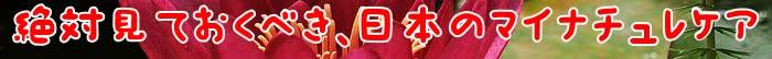 使用,髪,頭皮,エキス,マイナチュレ,育毛剤,トリートメント,効果,抜け毛,成分,色,ケア,育毛,カラー,シャンプー,髪の毛,女性,オールインワンケアカラートリートメント,白髪,コース,薄毛,ダメージ,場合,期間,商品,ヵ月,環境,口コミ,無添加,おすすめ,刺激,テスト,定期,ヶ月,ヘアケア,配合,剤,染料,実感,塗布,男性,毛髪,以上,改善,届け,変化,肌,女性用,送料,得,