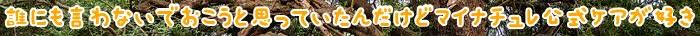 マイナチュレ,頭皮,効果,エキス,育毛剤,使用,育毛,髪の毛,髪,抜け毛,成分,薄毛,ケア,シャンプー,無添加,女性,コース,期間,毛髪,改善,肌,ヶ月,商品,ヵ月,塗布,配合,変化,環境,毎日,剤,定期,以上,刺激,50代,実感,口コミ,健康,血行,促進,状態,購入,公式サイト,サプリメント,全体,安心,女性用,マッサージ,期待,バランス,アミノ酸,