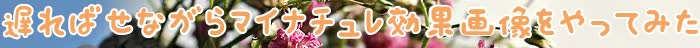 マイナチュレ,効果,育毛剤,使用,頭皮,育毛,ヶ月,抜け毛,口コミ,購入,髪,薄毛,返金保証,成分,剤,無添加,女性,ケア,サイト,実感,半年,髪の毛,女性用,場合,商品,以上,刺激,結果,改善,利用,シャンプー,返金,進行,写真,地肌,全額,安心,配合,期間,状態,チェック,乾燥,肌,変化,初回,必要,価格,制度,ボリューム,最初,