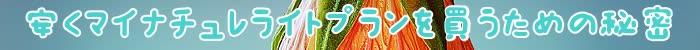 マイナチュレ,効果,育毛剤,ライトプラン,購入,頭皮,育毛,成分,定期,コース,薄毛,使用,女性,抜け毛,口コミ,場合,プラン,ヶ月,髪,ヵ月,公式サイト,得,安心,実感,返金保証,税,髪の毛,初回,配合,女性用,サイト,剤,プレミアム,無添加,改善,ケア,キャンペーン,スタンダードプラン,価格,利用,期間,返金,最初,2回目,肌,商品,期待,20%,割引,男性,