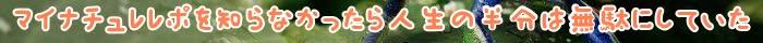 マイナチュレ,効果,育毛剤,頭皮,髪,育毛,薄毛,成分,抜け毛,レポ,エキス,トリートメント,カラー,購入,場合,使用,女性,白髪,口コミ,実感,無添加,安心,返金保証,ヶ月,ケア,敏感肌,定期,液,コース,剤,ブラウン,髪の毛,色,女性用,促進,配合,使い方,原因,状態,おすすめ,シャンプー,メーカー,量,肌荒れ,部分,心配,2回,1回,肌,一番,