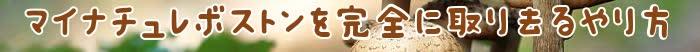 効果,口コミ,価格,amazon,楽天1/9 20:51:46,