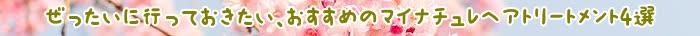 トリートメント,カラー,マイナチュレ,髪,色,マイナチュレヘアカラートリートメント,口コミ,白髪染め,マイナチュレカラートリートメント,使用,白髪,効果,頭皮,エキス,場合,髪の毛,コース,商品,ブラウン,成分,購入,ケア,定期,使い方,タオル,シャンプー,ダメージ,ヘアカラートリートメント,テスト,1回,公式サイト,敏感肌,ヘアケア,ダーク,得,染料,アレルギー,販売,おすすめ,楽天,落ち,刺激,花,1本,値段,具合,評価,放置,2回目,@cosme,