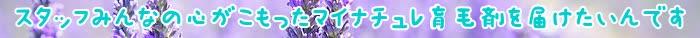 育毛剤,使用,マイナチュレ,エキス,頭皮,育毛,抜け毛,効果,髪の毛,女性,薄毛,期間,髪,ヵ月,剤,無添加,成分,ヶ月,商品,女性用,シャンプー,ケア,環境,年代,口コミ,実感,原因,40代女性,ダメージ,購入,声,最近,毎日,地肌,改善,男性,ホルモン,液,医薬部外品,120ml,毛髪,以上,配合,元気,20代女性,変化,仕事,バランス,塗布,サイクル,