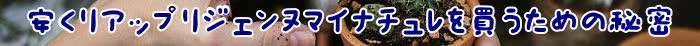 マイナチュレ,効果,育毛剤,リアップリジェンヌ,薄毛,頭皮,育毛,成分,使用,抜け毛,女性,購入,医薬品,剤,女性用,髪,口コミ,改善,分け目,場合,発,ミノキシジル,ヶ月,薬,ハゲ,イクオス,原因,定期,髪の毛,実感,安心,配合,説明,期待,薬剤師,方法,人気,男性,症状,部分,必要,齢,副作用,おすすめ,以前,返金保証,ケア,紹介,評判,大正製薬,