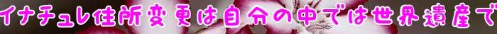 マイナチュレ,場合,変更,効果,当社,定期,コース,会員,育毛剤,購入,利用,商品,住所,頭皮,注文,サービス,トリートメント,価格,情報,公式,薄毛,カラー,育毛,解約,使用,1本,送料,登録,髪,届け,成分,提供,サイト,確認,Amazon,初回,白髪染め,行為,キャンペーン,連絡,規約,以下,その他,返金保証,アカウント,方法,発送,販売,楽天,店舗,