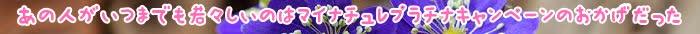 会員,入会,申し込み,JALカード,成分,場合,キャンペーン,マイル,家族,カード,以上,肌,プレゼント,ケア,ガスール,JAL,対象,本人,育毛,女性,ポイント,たんぱく質,効果,髪,髪の毛,サプリメント,配合,目元,栄養素,学生,コース,泡,利用,積算,原則,安定,収入,お子さま,高校生,マイナチュレ,Synergy,毛髪,必要,eyejam,吸着,2019年,アメリカン・エキスプレス,参加,登録,Suica,