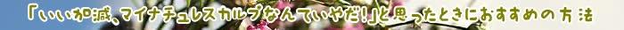 シャンプー,成分,エキス,頭皮,コンディショナー,コース,髪,マイナチュレ,スカルプ,無添加,使用,ノンシリコン,加水分解,配合,ヘア,育毛,以上,届け,定期,アミノ酸,送料,ケア,口コミ,得,スカルプケア,抜け毛,効果,毎月,便利,利用,ボトル,NA,果実,シリコン,特別価格,自動,様々,特典,9割,一番,人気,酸,花,健康,一般的,スカルプシャンプー,チェック,毛髪,環境,育毛剤,