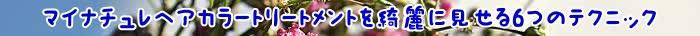トリートメント,カラー,マイナチュレ,髪,マイナチュレヘアカラートリートメント,色,口コミ,白髪染め,マイナチュレカラートリートメント,使用,白髪,効果,頭皮,エキス,場合,コース,ブラウン,商品,成分,髪の毛,購入,定期,タオル,使い方,ケア,シャンプー,ヘアカラートリートメント,ダメージ,1回,テスト,公式サイト,染料,ダーク,敏感肌,得,アレルギー,おすすめ,楽天,ヘアケア,刺激,花,1本,値段,販売,具合,評価,放置,2回目,@cosme,安心,