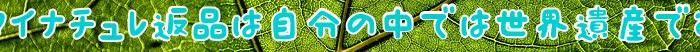 マイナチュレ,効果,育毛,育毛剤,剤,薄毛,使用,返金,場合,購入,商品,返金保証,女性用,頭皮,成分,女性,利用,抜け毛,髪,定期,返品,解約,送料,確認,口コミ,方法,コース,全額,安心,公式サイト,ヶ月,電話,実感,Amazon,注文,男性,髪の毛,肌,連絡,無添加,返送,以内,制度,180日間,シャンプー,サイト,注意,使い方,初回,理由,