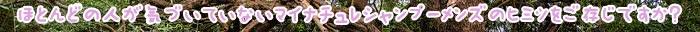 育毛剤,シャンプー,男性,成分,マイナチュレ,頭皮,女性,育毛,薄毛,効果,使用,配合,商品,無添加,薬用,髪,全額,返金保証,安心,口コミ,ケア,洗浄,人気,アミノ酸,特徴,マイナチュレシャンプー,利用,おすすめ,女性向け,抜け毛,毛,有効成分,天然,皮脂,価格,ランキング,購入,ex,評判,BUBKA,ナノ,花蘭,咲,香料,男性向け,紹介,男女,サイト,掲載,毛髪,