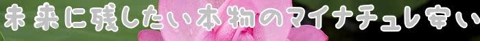 マイナチュレ,購入,育毛剤,シャンプー,価格,楽天,定期,コース,女性,育毛,公式,トリートメント,キャンペーン,カラー,効果,販売,送料,成分,薄毛,サイト,アマゾン,最安値,公式サイト,1本,得,頭皮,無添加,白髪染め,商品,髪,使用,店舗,激,口コミ,Amazon,安,2本,人気,方法,評判,抜け毛,情報,初回,比較,コンディショナー,以上,薬用,全額,剤,リサーチ,