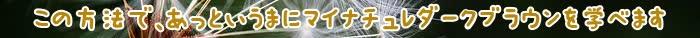 色,マイナチュレヘアカラートリートメント,トリートメント,髪,カラー,マイナチュレ,使用,ブラウン,口コミ,効果,ダーク,白髪,商品,白髪染め,成分,頭皮,場合,コース,エキス,購入,ダメージ,テスト,ケア,落ち,染料,定期,得,使い方,敏感肌,利尻,タオル,おすすめ,2色,具合,ヘアケア,アレルギー,満足,実感,シャンプー,評判,販売,利用,評価,刺激,マイナチュレカラートリートメント,1回,価格,パッチ,肌,部分,