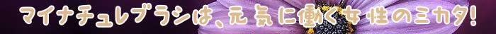 頭皮,マイナチュレ,髪,ブラシ,効果,抜け毛,ブラッシング,ヶ月,シャンプー,育毛剤,育毛,成分,髪の毛,ケア,部分,薄毛,supli,頭皮マッサージ,静電気,口コミ,刺激,ポイント,美容師,剤,匂い,負担,ヘアーブラシ,使用,血行,毎日,ボリューム,実感,簡単,無添加,促進,マッサージ,購入,女性,仕上がり,商品,マイナチュレシャンプー,ドライヤー,おすすめ,塗布,使い,ツヤ,クッション,愛用,吹き出物,サポート,