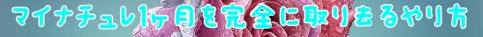 マイナチュレ,育毛,効果,コース,頭皮,ケア,ヶ月,育毛剤,成分,髪の毛,髪,定期,購入,利用,肌,無添加,シャンプー,返金保証,エキス,使用,場合,女性用,サプリメント,健康,毛髪,配合,安心,状態,改善,女性,全額,抜け毛,半年,一番,商品,以上,剤,変化,さま,美容,届け,特典,会員,ハリ,環境,必要,実感,薄毛,人気,洗浄,
